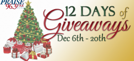 12 Days of Christmas = 12 Days of Giveaways