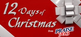 12 Days of Christmas Coming Soon