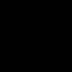 SNFA2016 Top 5 Nominee Logo-BK